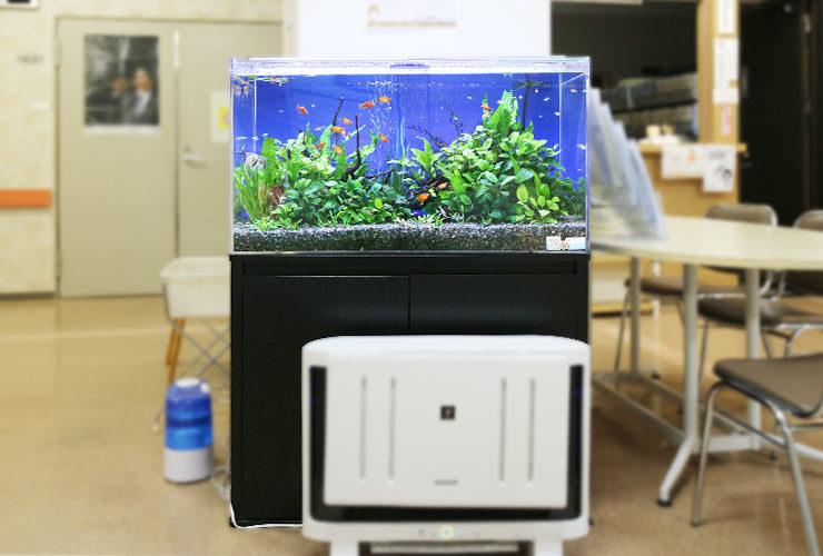 あきる野市 内科クリニック 90cm淡水魚水槽 設置事例
