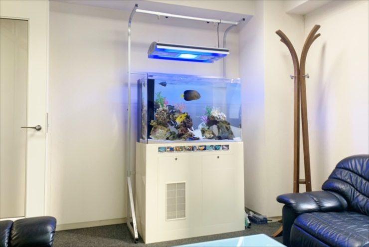豊島区 オフィス事務所 90cm海水魚水槽 入替事例 水槽画像1