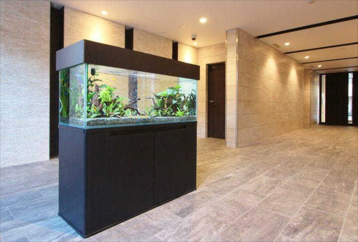 練馬区 新築マンションのエントランス 120cm淡水魚水槽 短期設置事例 水槽画像1