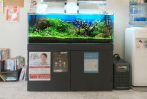神戸市 歯科クリニック 120cm淡水魚水槽 メンテナンス事例 水槽画像2