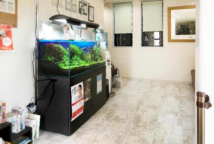 120cm淡水魚水槽 メンテナンス画像5