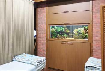 病院 120cm淡水魚水槽 リセット・メンテナンス事例 水槽画像1