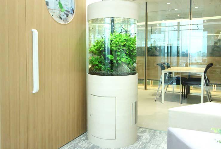 品川区 オフィス事務所 円柱アクアリウム 設置事例 水槽画像1