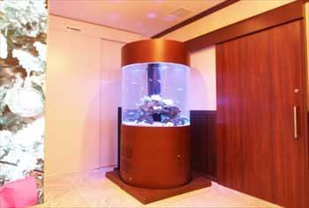 港区 クリニック 大型円柱海水魚水槽 移動事例 水槽画像1