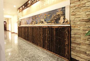 東京都台東区 店舗  420cm埋め込み淡水魚水槽 メンテナンス事例 水槽画像1