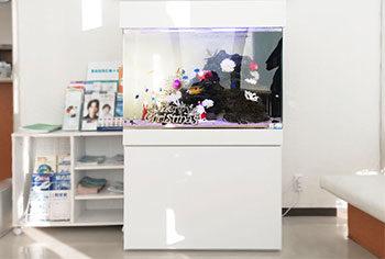 愛知県 眼科クリニックの待合室  90cm海水魚水槽をリニューアル 水槽画像1