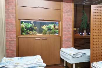 病院 120cm淡水魚水槽 リセット・メンテナンス事例 水槽画像2