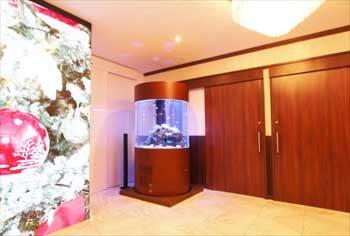 港区 クリニック 大型円柱海水魚水槽 移動事例 水槽画像2