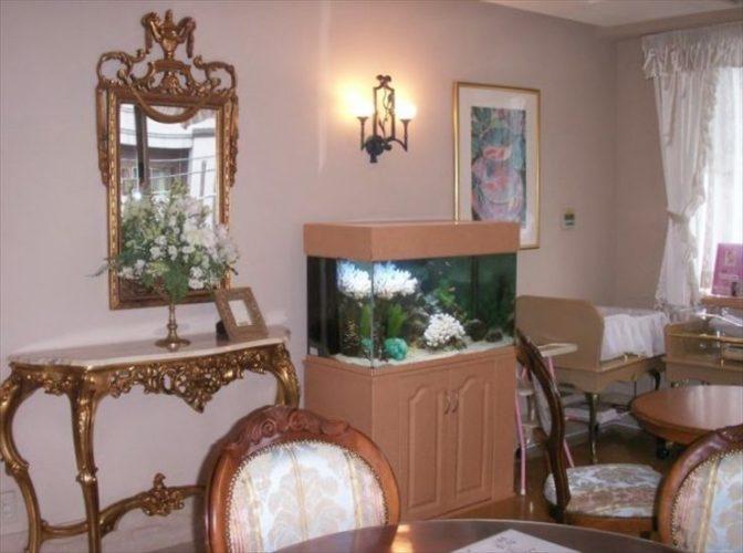 千葉県 婦人科医院様  90cm淡水魚水槽  設置事例 メイン画像