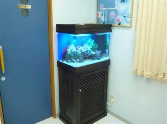 神奈川県横浜市 歯科医院様  90cm海水魚水槽  設置事例 メイン画像