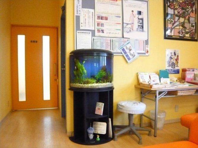 神奈川県横浜市 医院様  水槽設置事例 メイン画像