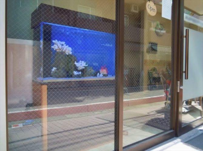 東京都 歯科医院様  90cm海水魚水槽  設置事例 メイン画像