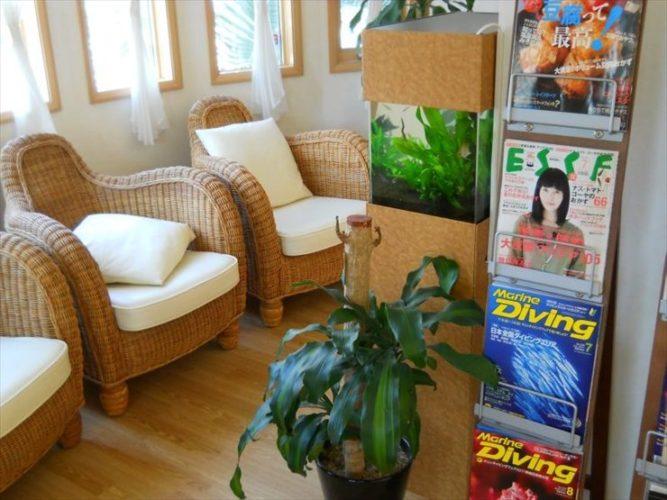 茨城県牛久市 脳神経クリニック様  水槽設置事例 メイン画像