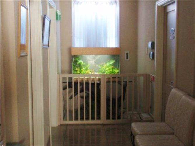 千葉県 婦人科医院様  水槽設置事例 メイン画像