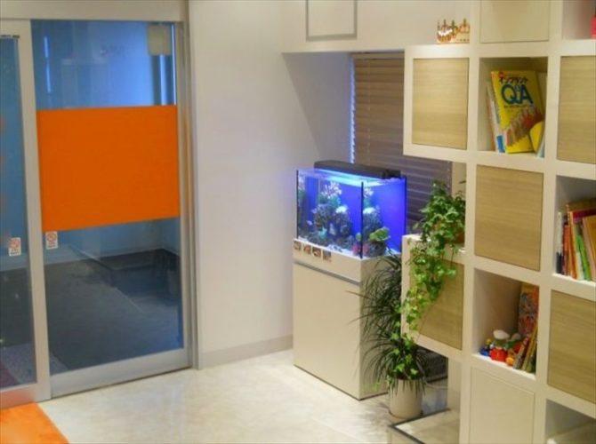 東京都北区 歯科医院様  60cm海水魚水槽  設置事例 メイン画像