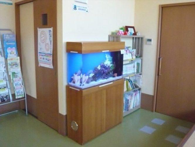 千葉県 病院様  90cm海水魚水槽  設置事例 メイン画像