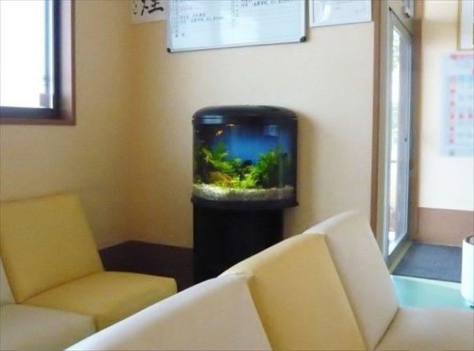 千葉県 病院様  水槽設置事例 メイン画像