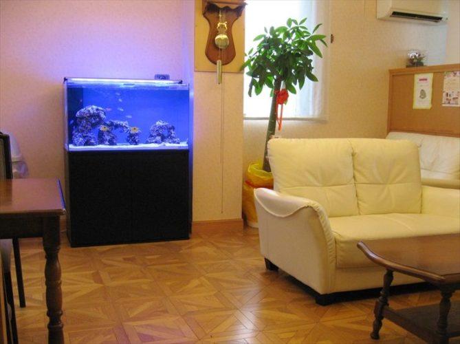 愛知県日進市 産婦人科クリニック様  水槽設置事例 メイン画像