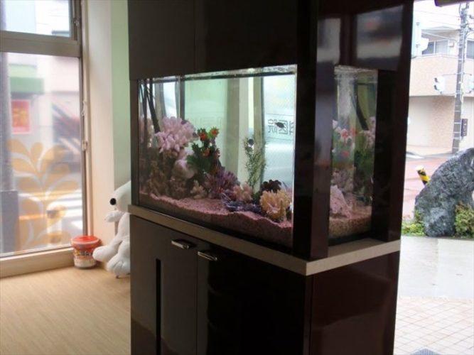 横浜市 歯科医院の待合室 90cm海水魚水槽 設置事例 メイン画像