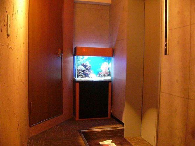 池袋 店舗様  60cm海水魚水槽  設置事例 メイン画像