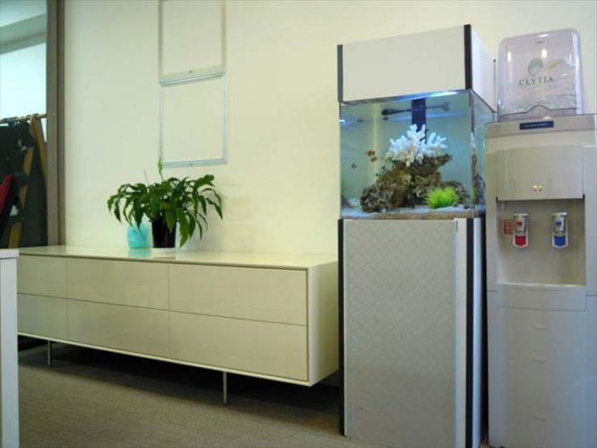 インデックス株式会社様 45cm海水魚水槽  設置事例 メイン画像