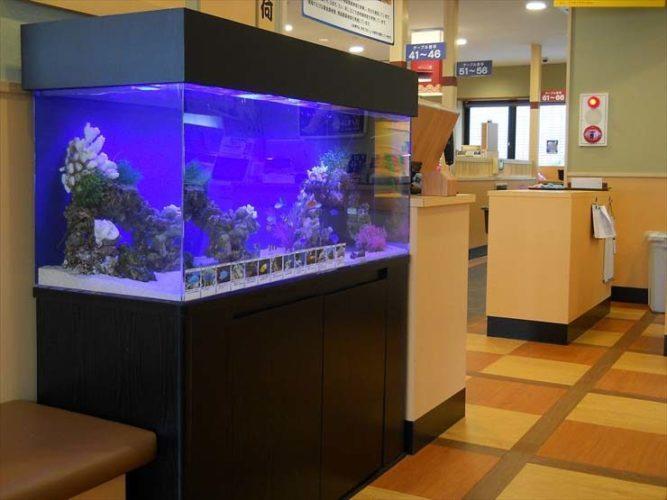 東京都江戸川区 飲食店様  120cm海水魚水槽  設置事例 メイン画像