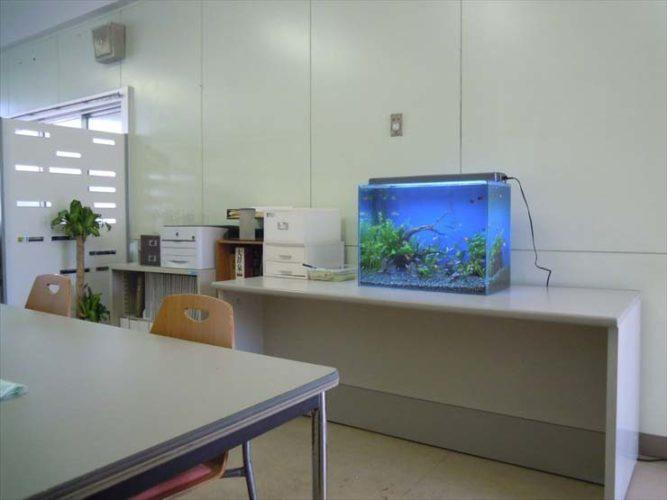 映画撮影  短期レンタル  水槽設置事例 メイン画像