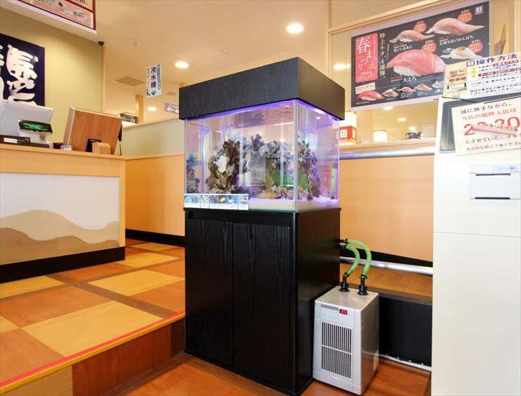 大田区 飲食店様  60cm海水魚水槽  設置事例 水槽画像1