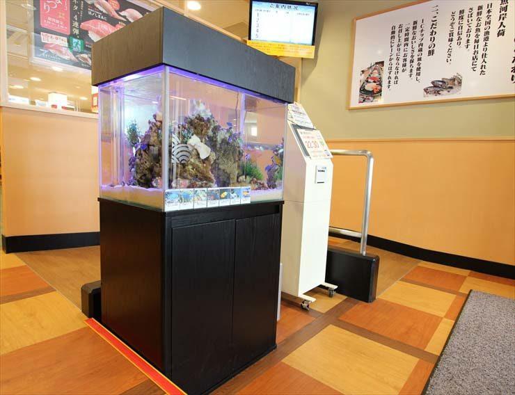 大田区 飲食店様  60cm海水魚水槽  設置事例 水槽画像3