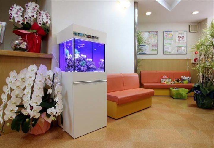 神奈川県横浜市 小児科様  45cm海水魚水槽  設置事例 メイン画像
