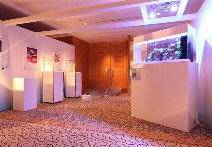 横浜 ジュエリーイベント 水槽設置事例 メイン画像