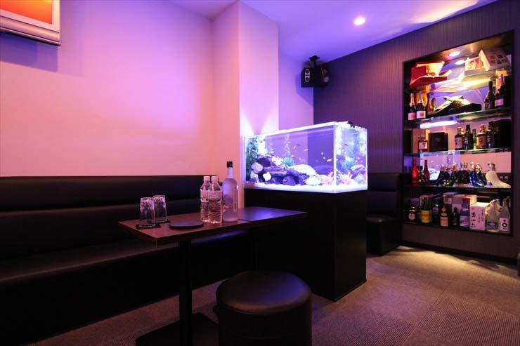 豊島区 飲食店様  90cm淡水魚水槽  設置事例 水槽画像3