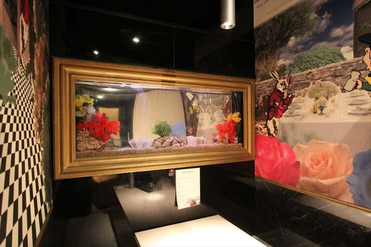 新宿区 飲食店様  水槽設置事例 メイン画像