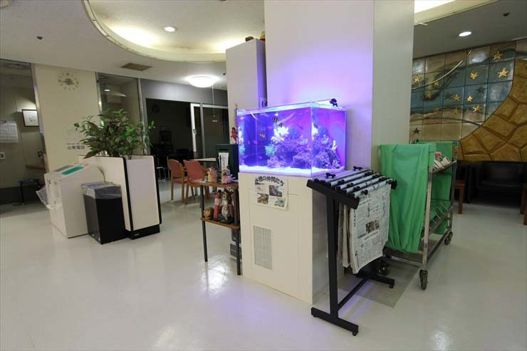 東村山市 施設様  60cm海水魚水槽  設置事例 メイン画像