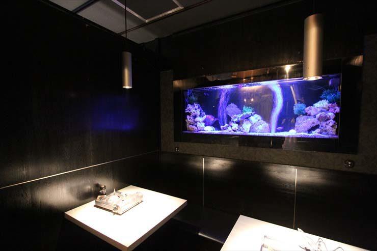 渋谷区 飲食店様  水槽設置事例 水槽画像2