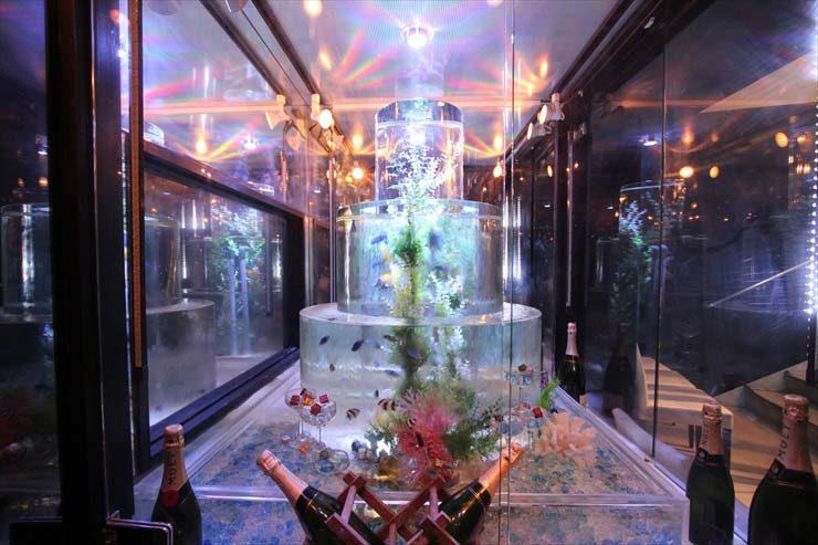 渋谷区 飲食店様  水槽設置事例 水槽画像3