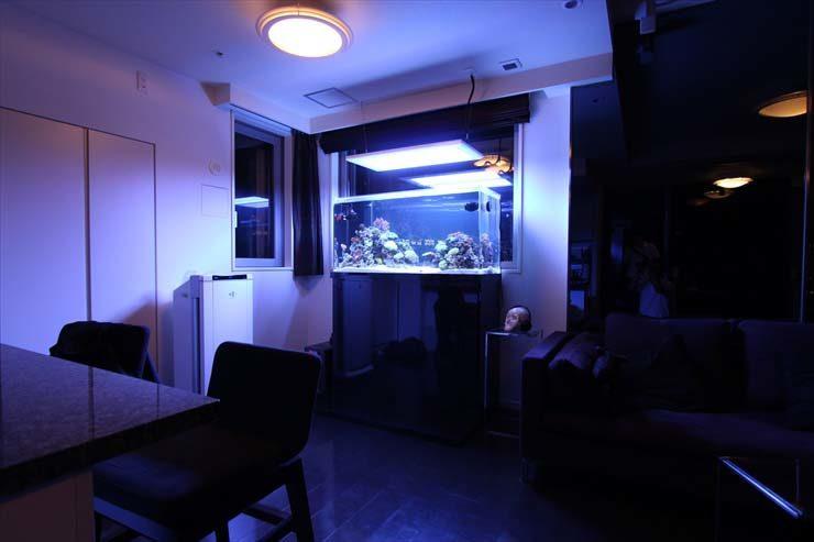 都内 個人宅様  120cm海水魚水槽  設置事例 メイン画像
