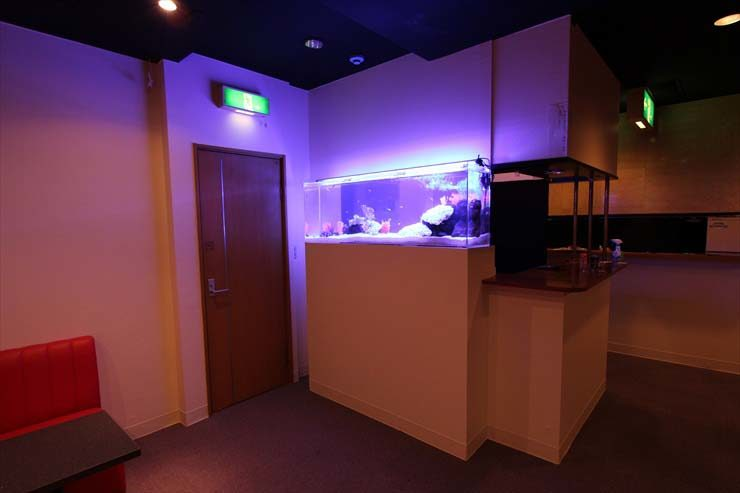 江戸川区 飲食店様  150cm淡水魚水槽  設置事例 メイン画像