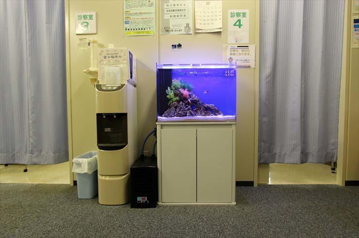 八王子市 クリニック様  90cm海水魚水槽  設置事例 メイン画像