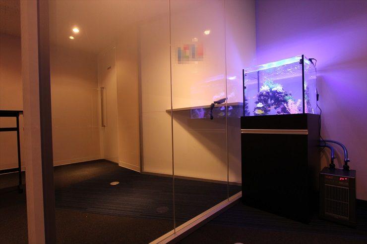 東京都新宿区 企業様  45cm海水魚水槽  設置事例 メイン画像