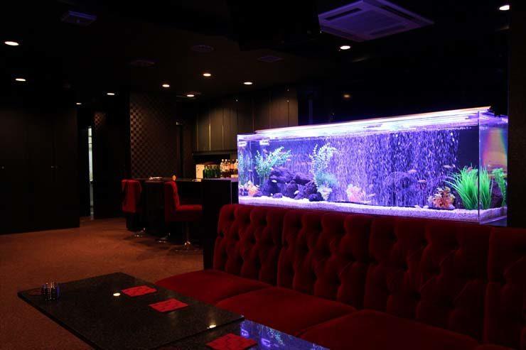 神奈川県横浜市 飲食店様  150cm淡水魚水槽 設置事例 メイン画像