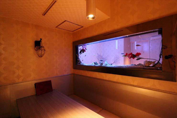 六本木 飲食店様  150cm海水魚水槽  設置事例 メイン画像