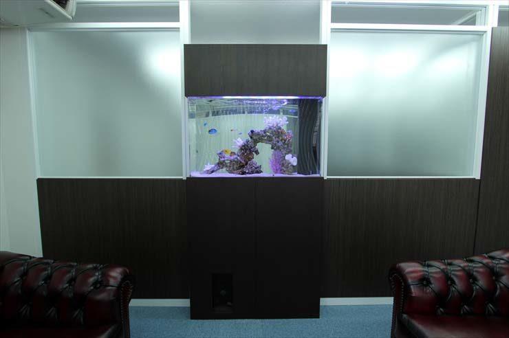 板橋区 企業様  90cm海水魚水槽  設置事例 メイン画像