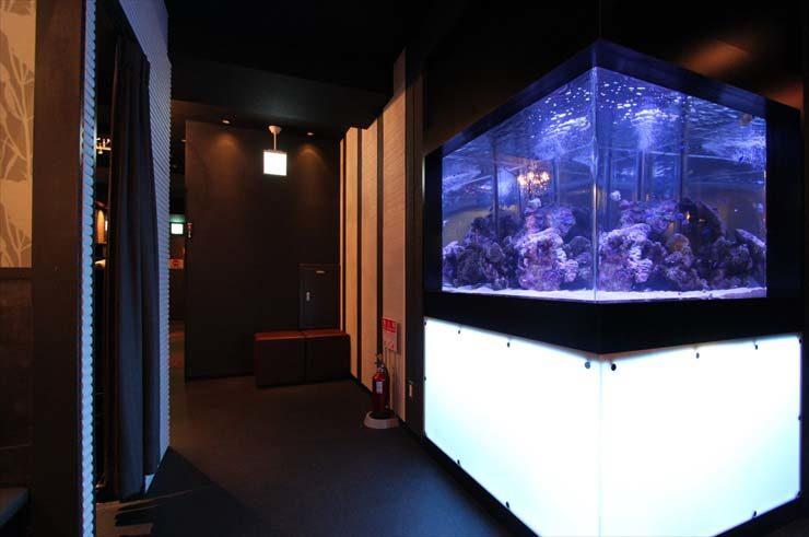 秋葉原 飲食店様 120cm海水魚水槽  設置事例 メイン画像