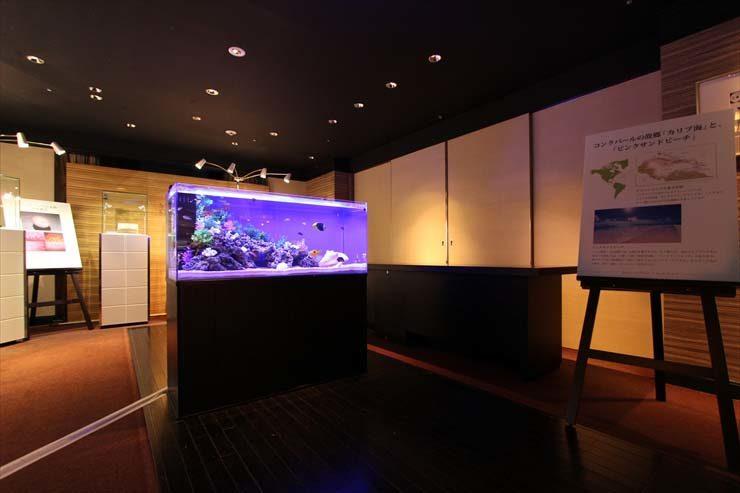 日本橋 ジュエリーイベント 水槽設置事例 メイン画像