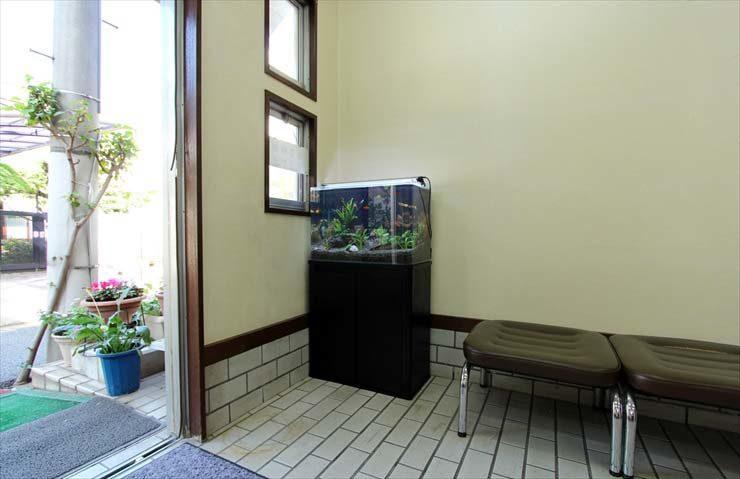 東京都練馬区 薬局様  60cm淡水魚水槽  設置事例 メイン画像