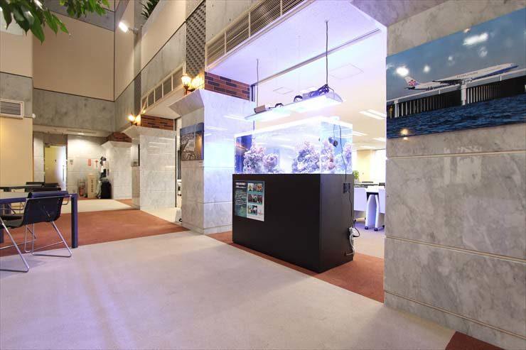 神奈川県横浜市 企業様  150cm海水魚水槽  設置事例 メイン画像