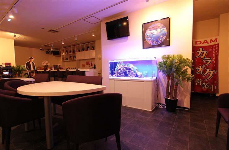 神奈川県横浜市 飲食店様 120cm海水魚水槽 設置事例 メイン画像