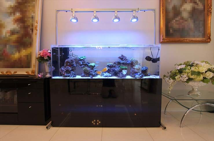 都内 個人宅様  リビングのサンゴ水槽設置事例  水槽画像2