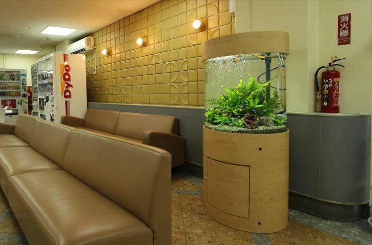 池袋 病院様  60cm円柱水槽  設置事例 メイン画像